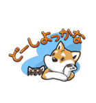 柴犬大好きスタンプ(個別スタンプ:39)