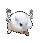 ハムスター☆だいふく ver.3(個別スタンプ:18)