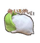 ハムスター☆だいふく ver.3(個別スタンプ:19)