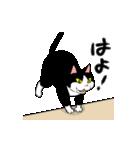 おはぎ(動)ハイテンション(個別スタンプ:14)