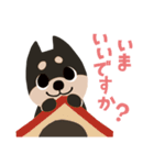 BARON BUDDIES 22 柴犬(個別スタンプ:01)