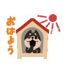BARON BUDDIES 22 柴犬(個別スタンプ:02)