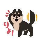 BARON BUDDIES 22 柴犬(個別スタンプ:04)