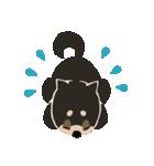 BARON BUDDIES 22 柴犬(個別スタンプ:09)