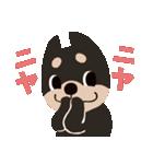 BARON BUDDIES 22 柴犬(個別スタンプ:15)