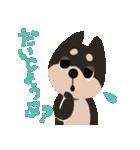 BARON BUDDIES 22 柴犬(個別スタンプ:24)