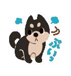 BARON BUDDIES 22 柴犬(個別スタンプ:26)