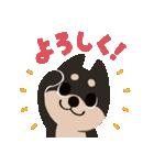 BARON BUDDIES 22 柴犬(個別スタンプ:28)