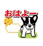 わんこ日和 フレンチブルドッグの仔犬(個別スタンプ:01)