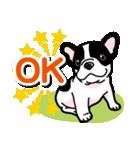 わんこ日和 フレンチブルドッグの仔犬(個別スタンプ:05)