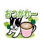 わんこ日和 フレンチブルドッグの仔犬(個別スタンプ:13)