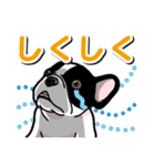 わんこ日和 フレンチブルドッグの仔犬(個別スタンプ:22)