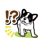 わんこ日和 フレンチブルドッグの仔犬(個別スタンプ:24)
