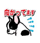 わんこ日和 フレンチブルドッグの仔犬(個別スタンプ:31)