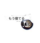 吹き出しフレンチブルドッグのココ(個別スタンプ:04)