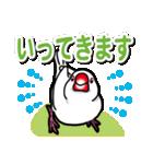 文鳥横丁(個別スタンプ:03)