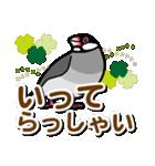文鳥横丁(個別スタンプ:04)