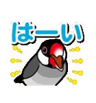 文鳥横丁(個別スタンプ:06)