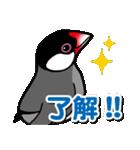 文鳥横丁(個別スタンプ:08)
