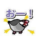 文鳥横丁(個別スタンプ:17)