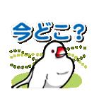 文鳥横丁(個別スタンプ:28)
