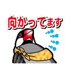 文鳥横丁(個別スタンプ:31)