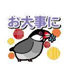 文鳥横丁(個別スタンプ:37)