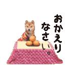 【柴犬写真】よく使う返事とあいさつ(個別スタンプ:15)
