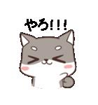 博多弁のしばいぬ(個別スタンプ:02)