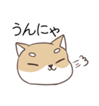 博多弁のしばいぬ(個別スタンプ:03)