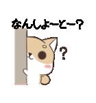 博多弁のしばいぬ(個別スタンプ:05)