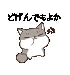 博多弁のしばいぬ(個別スタンプ:12)