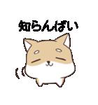 博多弁のしばいぬ(個別スタンプ:13)