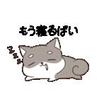 博多弁のしばいぬ(個別スタンプ:24)