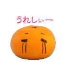みかんの気持ち【日常編】(個別スタンプ:05)
