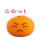 みかんの気持ち【日常編】(個別スタンプ:14)