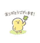 ぴよこ豆(個別スタンプ:01)