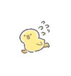 ぴよこ豆(個別スタンプ:04)