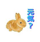 ウサギさんのスタンプ(個別スタンプ:02)