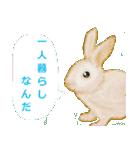 ウサギさんのスタンプ(個別スタンプ:11)