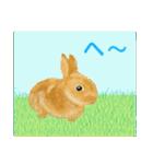 ウサギさんのスタンプ(個別スタンプ:12)