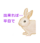 ウサギさんのスタンプ(個別スタンプ:19)