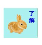 ウサギさんのスタンプ(個別スタンプ:21)