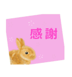 ウサギさんのスタンプ(個別スタンプ:28)
