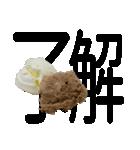 語るアイスクリーム02(個別スタンプ:11)
