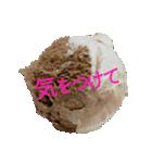 語るアイスクリーム03(個別スタンプ:33)