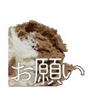 語るアイスクリーム03(個別スタンプ:34)