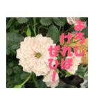 花のスタンプ 4(個別スタンプ:3)
