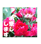 花のスタンプ 4(個別スタンプ:15)