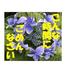 花のスタンプ 4(個別スタンプ:22)